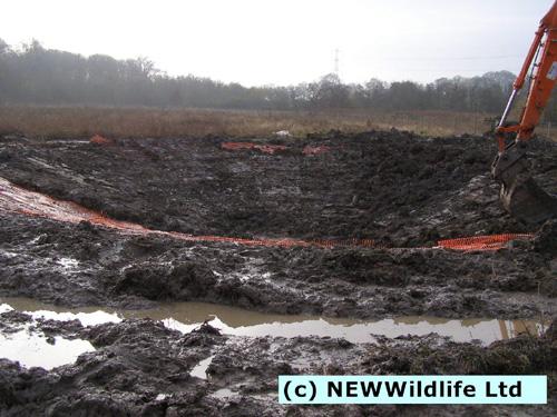 1-1 dec 2014 MYG Building Wildlife pond during1 e