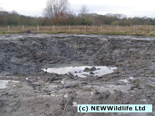 2-8 dec 2014 MYG Building Wildlife pond after3 e